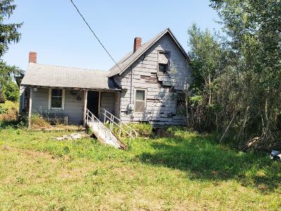 Eaton Rapids Single Family Home For Sale: 1807 N Gunnell Road
