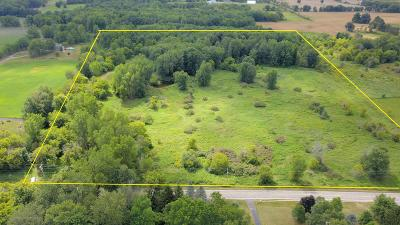 Dewitt Residential Lots & Land For Sale: W Alward Road