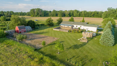 Dewitt Single Family Home For Sale: 10210 S Williams Road