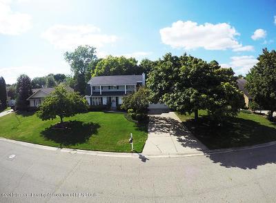 Lansing Single Family Home For Sale: 2501 Rockdale Avenue