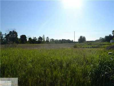 Grand Ledge Residential Lots & Land For Sale: 1175 S Clinton