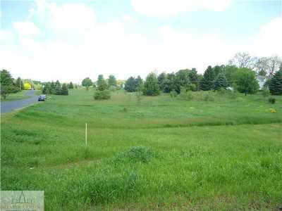 Charlotte Residential Lots & Land For Sale: Packard