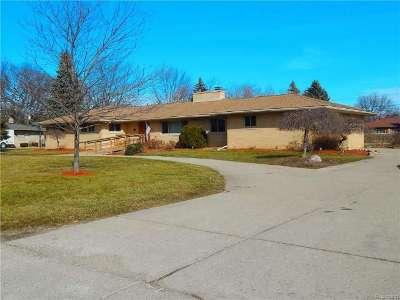Clinton Township Single Family Home For Sale: 38196 E Horseshoe Dr