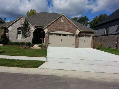 Shelby Twp Single Family Home For Sale: 1981 Westridge Dr