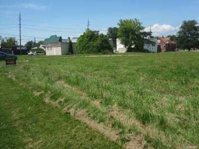 Clinton Township Residential Lots & Land For Sale: 24047 Shook