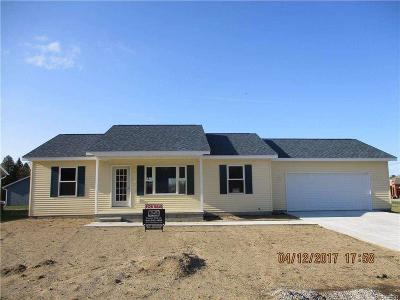 Burtchville Single Family Home For Sale: 3636 Washington