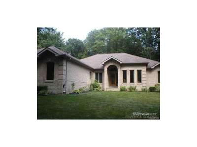 Algonac Single Family Home For Sale: 9017 Phelps Rd