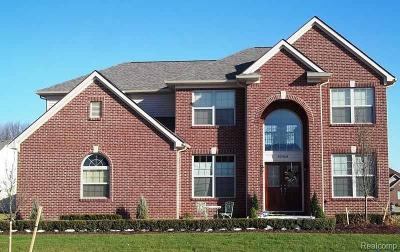 Lake Orion Single Family Home For Sale: 245 Fairway View Dr