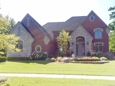 Shelby Twp Single Family Home For Sale: 2986 Barberry