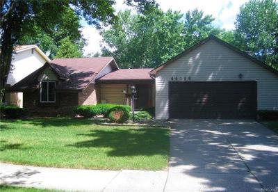 Canton Single Family Home For Sale: 44196 Leeann Ln