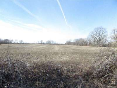 Residential Lots & Land For Sale: Kronner Rd