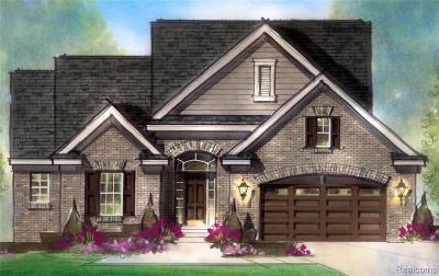 Macomb Single Family Home For Sale: 50011 North Anita Way
