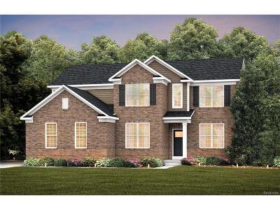 Lake Orion Single Family Home For Sale: 1398 Goldeneye Ln