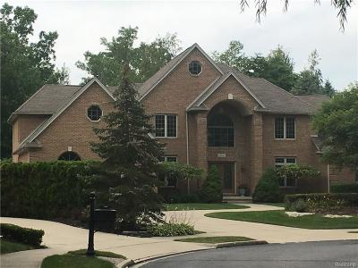 Clinton Township Single Family Home For Sale: 37201 Willow Lane