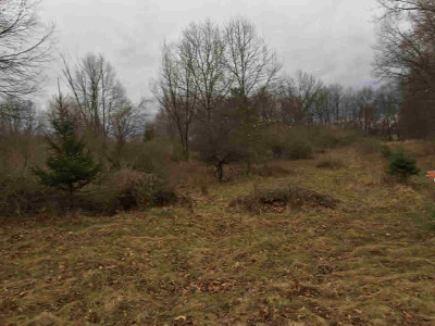 Lapeer Residential Lots & Land For Sale: 1788 Hidden View
