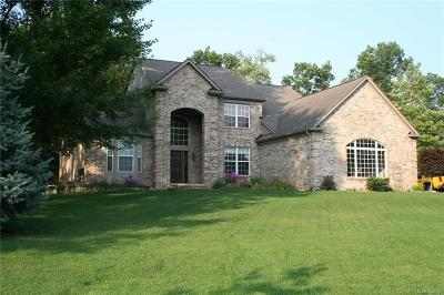 Lake Orion Single Family Home For Sale: 545 Manitou