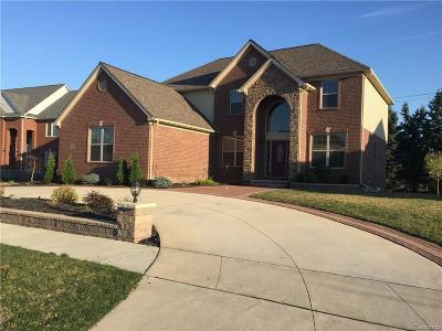 Shelby Twp Single Family Home For Sale: 4366 S Lake Ln