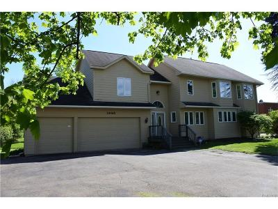 Livonia Single Family Home For Sale: 34465 5 Mile Rd