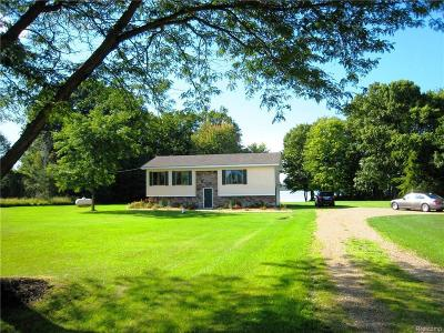 Lapeer Single Family Home For Sale: 5130 Stanley Rd