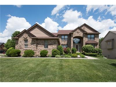 Lake Orion Single Family Home For Sale: 711 Roxbury Crt