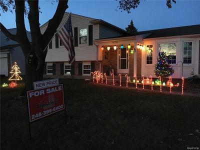 Sterling Heights Single Family Home For Sale: 14353 Suffield Ln