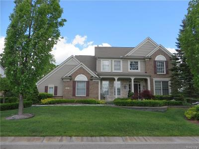Lake Orion Single Family Home For Sale: 297 Franklin Wright Blvd