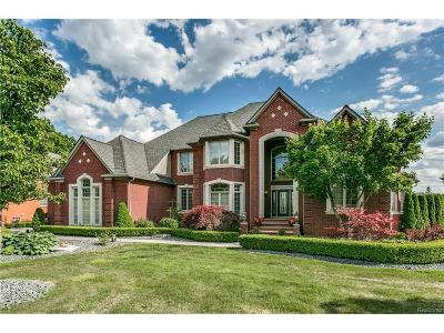 Macomb Single Family Home For Sale: 8938 Inverness