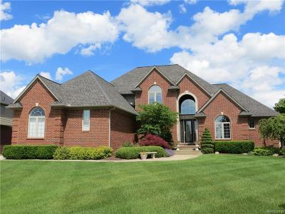 Oakland Twp Single Family Home For Sale: 2661 Invitational Dr