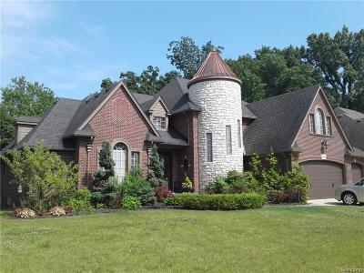 Harrison Twp Single Family Home For Sale: 38464 Trillium Pl