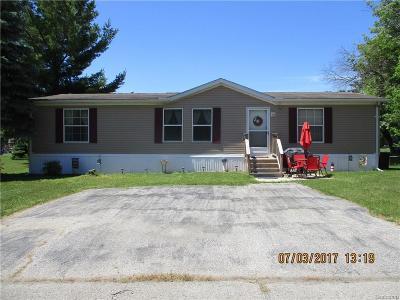 Burtchville Single Family Home For Sale: 6063 Eastwood Dr