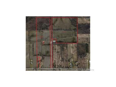 Ray, Ray Twp Residential Lots & Land For Sale: 29 Mile Rd