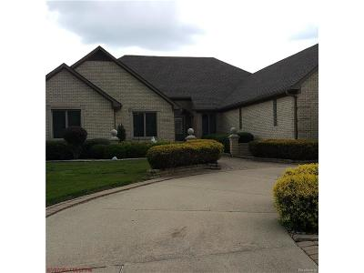 Clinton Township Single Family Home For Sale: 40467 Emerald W