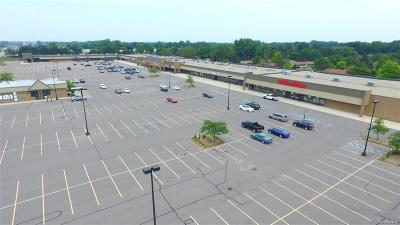 Commercial Lease For Lease: 37676 Van Dyke Ave