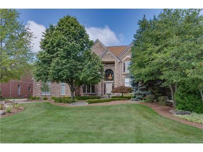 Rochester Single Family Home For Sale: 797 Crestwood Ln