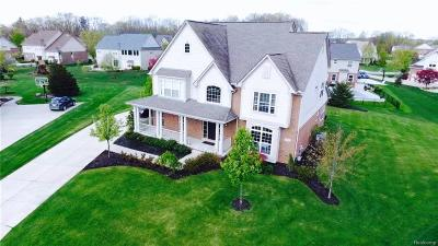 Lake Orion Single Family Home For Sale: 1770 S Mill Crt