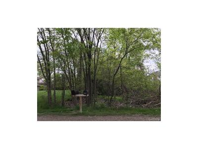 Clinton Township Residential Lots & Land For Sale: 15861 Palms