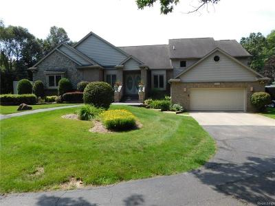 Oakland Twp Single Family Home For Sale: 3572 Orion