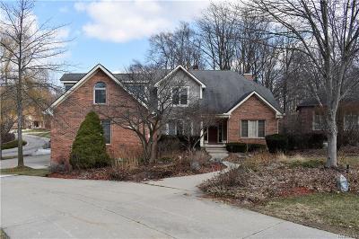 Farmington Hills Single Family Home For Sale: 28690 Wintergreen Crt