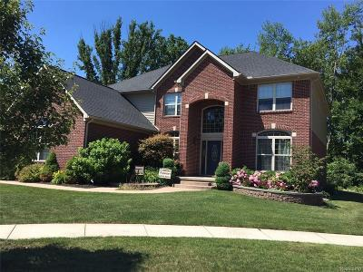 Sterling Heights Single Family Home For Sale: 42491 Hickorywood