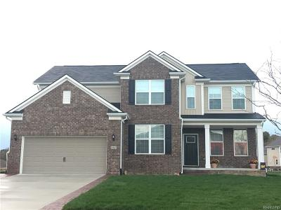Lake Orion Single Family Home For Sale: 2194 Findley Cir