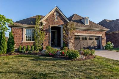 Farmington Hills Single Family Home For Sale: 33535 Heirloom Cir