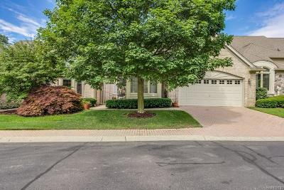Plymouth Condo/Townhouse For Sale: 9395 Arbor Crt