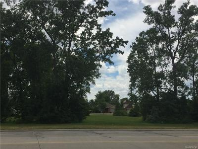 Sterling Heights Residential Lots & Land For Sale: 35503 Dodge Park