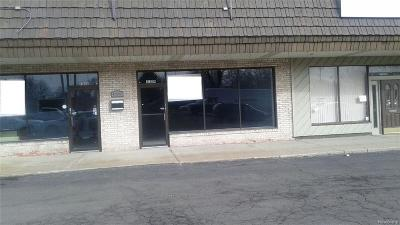 Clinton Township Commercial/Industrial For Sale: Hayes Rd