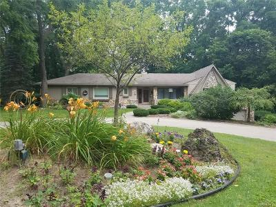 Clinton Township Single Family Home For Sale: 17821 Saint Mary St