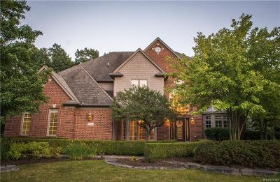 Clarkston Single Family Home For Sale: 8834 Hunters Creek Ct