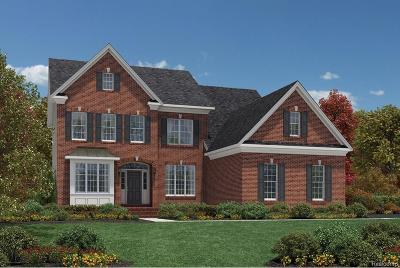 Canton Single Family Home For Sale: 50876 Silverton Dr