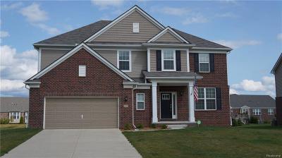 Lake Orion Single Family Home For Sale: 2033 Gunnison St
