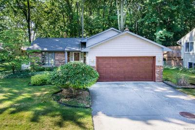 Troy Single Family Home For Sale: 2698 Winter Dr