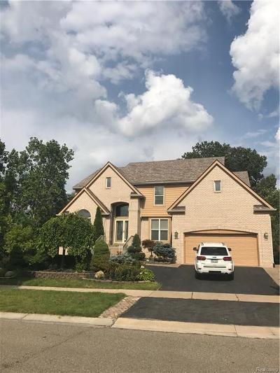 West Bloomfield Single Family Home For Sale: 4937 Lake Crest